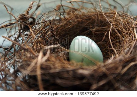 A Robins nest in early springtime with her blue egg shallow depth of field focus on the top part of the egg.
