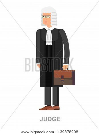 Law Vector detailed character the judge, cool flat illustration
