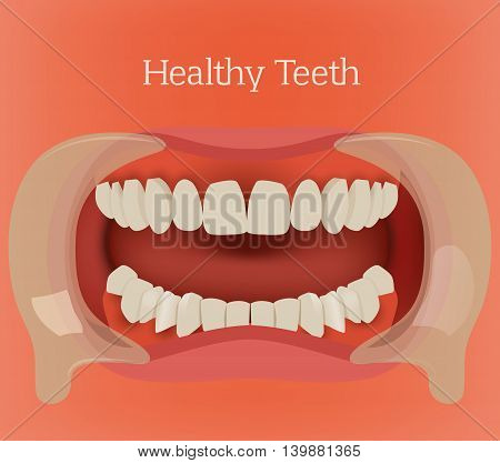 Healthy teeth illustration. Vector dental image with orthodontic bite. Human anatomy concept in red and pink colors.
