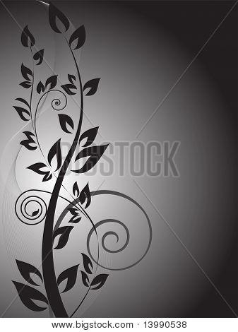 Black Branch