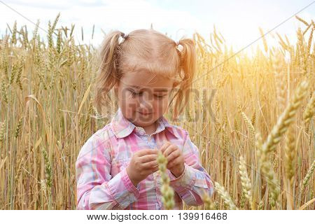 Little Preschooler Girl  Happily In Wheat Field On Warm And Sunny Day