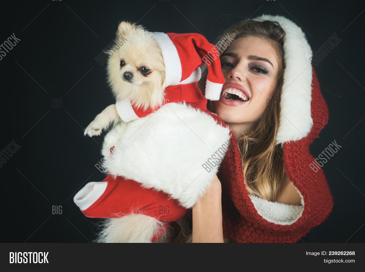 5fb308b65b1 Christmas friends - beautiful smiling woman in Santa hat with cute puppy in  Christmas dressed as Santa Claus. Funny woman in Santa hat with pet on  Christmas ...
