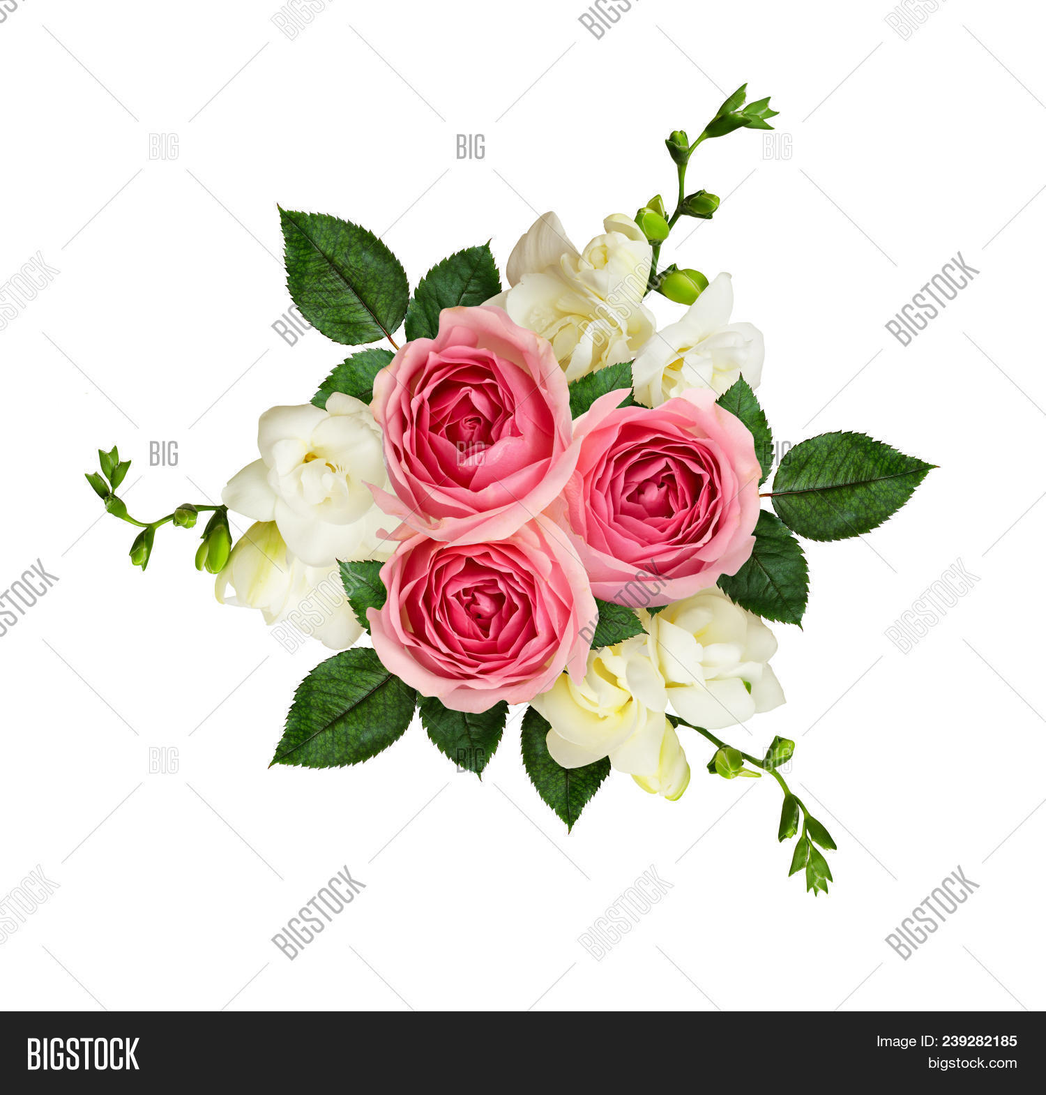 Pink roses freesia flowers bouquet image photo bigstock pink roses and freesia flowers in a bouquet isolated on white top view flat izmirmasajfo