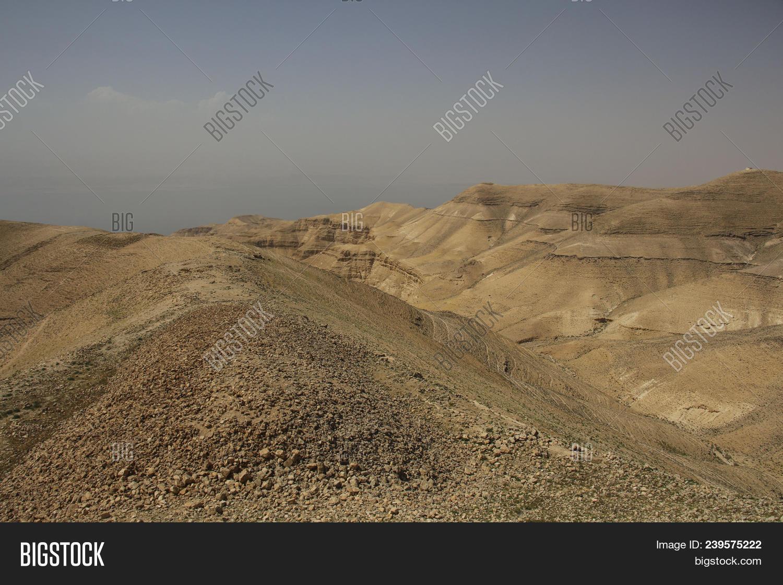 view machaerus herod image photo free trial bigstock