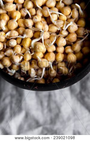 Sprouted Chickpea In Wooden Bowl On Rustic Linen Textile. Bean Sprouts Raw. Source Of Protein For Ve