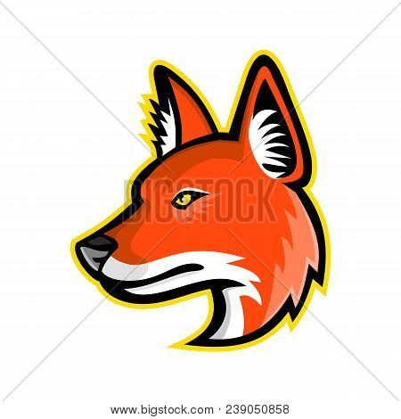 Sports mascot icon illustration of head of a dhole, Asiatic wild dog, Indian wild dog, whistling dog, red dog or mountain wolf, a canid native to Asia viewed from side on isolated background in retro style. poster