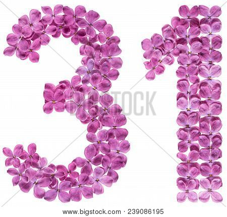 Arabic Numeral 31, Thirty One, From Flowers Of Lilac, Isolated On White Background