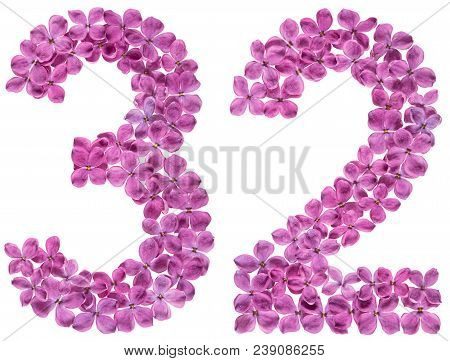 Arabic Numeral 32, Thirty Two, From Flowers Of Lilac, Isolated On White Background