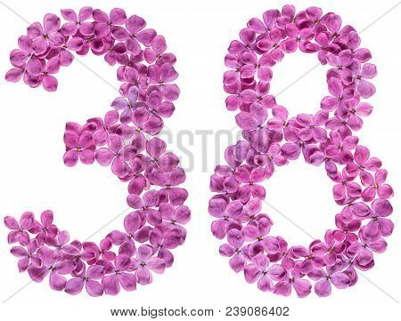 Arabic Numeral 38, Thirty Eight, From Flowers Of Lilac, Isolated On White Background
