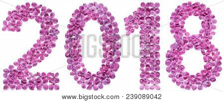 Numeral 2018 From Flowers Of Lilac, Isolated On White Background