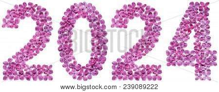 Numeral 2024 From Flowers Of Lilac, Isolated On White Background