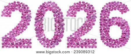 Numeral 2026 From Flowers Of Lilac, Isolated On White Background
