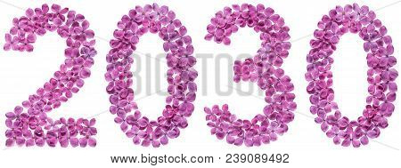 Numeral 2030 From Flowers Of Lilac, Isolated On White Background