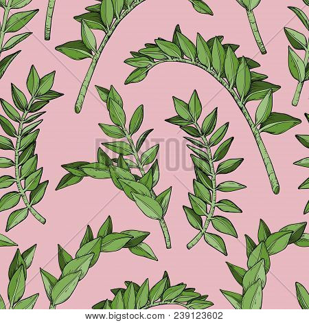 Abstract Seamless Leaves Pattern With Brunch Of Tropical Plant, Vector Illustration
