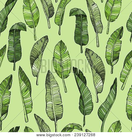 Abstract Seamless Leaves Pattern With Tropical Leaves, Vector Illustration