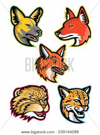 Sports Mascot Icon Set Of Heads Of Wild Dogs And Cats Like The African Wild Dog Or Painted Hunting D