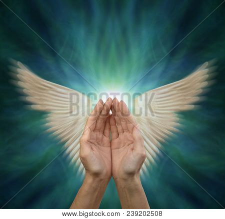 Sending Out Angelic Healing Energy - Cupped Female Hands With Motion Blurred Angel Wings Either Side
