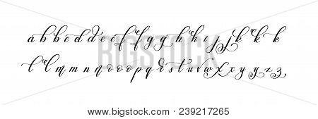 Latin Hand Written Alphabet Design - Little Letters, Calligraphy Vector Illustration