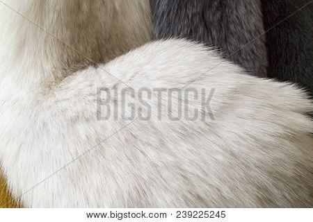 Fur, White Naturar Fur Texture