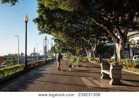 Santa Cruz De Tenerife, Canary Islands, Spain - Desember 11, 2016: People Walking With A Dog And Run