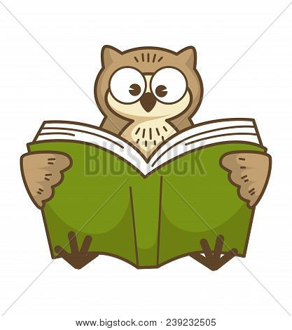 Wise Owl With Big Round Eyes Reads Book In Green Hardcover. Bird Learns New Information. Funny Wild