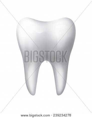 White Isolated Tooth Stomatology Icon, Esp 10 Contains Transparency.