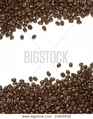 Many Coffee Beans On White Background