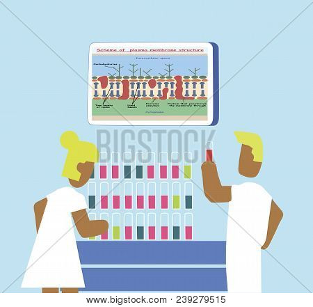 The Doctor And Nurse Are Studying A Blood Test In Test Tubes. The Doctor Is Holding A Test Tube With