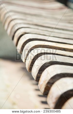 Wooden Trims Of The Bench. Contrasting Background.