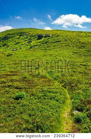 Footpath Through The Grassy Hills Of The Mountain. Beautiful Summer Scenery In Fine Weather With Som