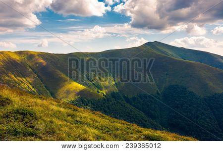 Stij Peak Under The Cloudy Summer Sky. Beautiful Landscape Of Carpathian Mountains. Great Destinatio