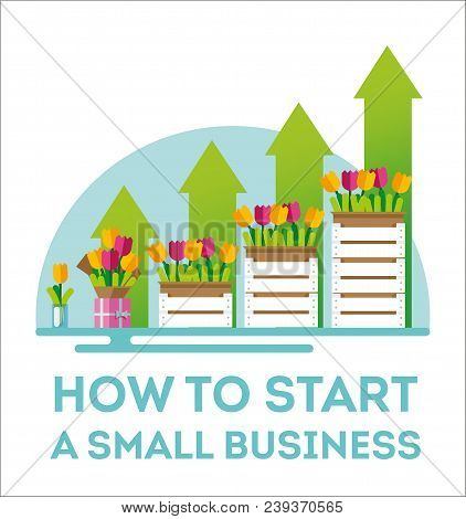 Infographic Small Business. The Emergence Of Small Business. Flowers As The Birth Of A Small Busines