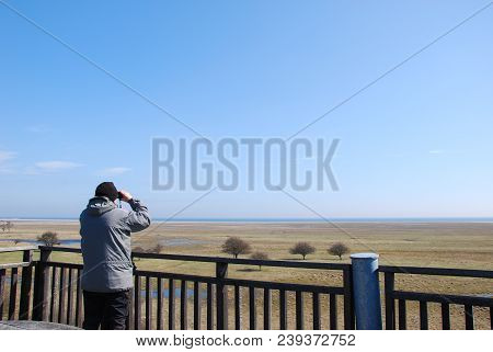 Man Watching Birds With  Binoculars From A Tower By The Great Grassland At Ottenby On The Swedish Is