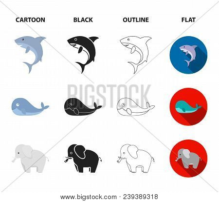 Whale, Elephant, Snake, Fox.animal Set Collection Icons In Cartoon, Black, Outline, Flat Style Vecto