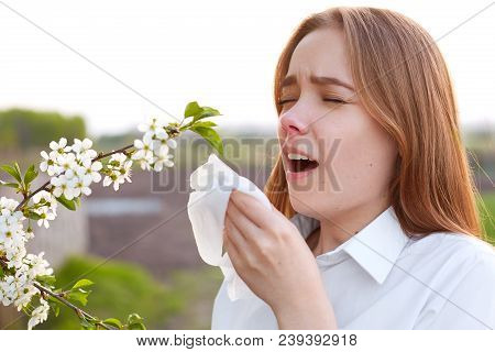 Seasonal Allergy. Pretty Young Female Blows Nose And Sneezes, Stands In Front Of Blooming Tree, Bein