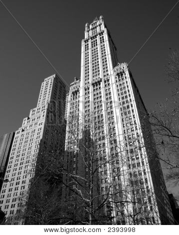 Woolworth Building Nyc B&W