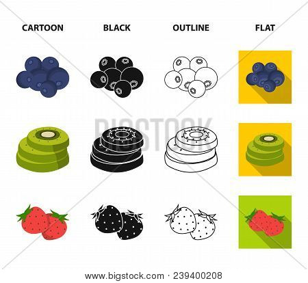 Fruits And Other Food. Food Set Collection Icons In Cartoon, Black, Outline, Flat Style Vector Symbo