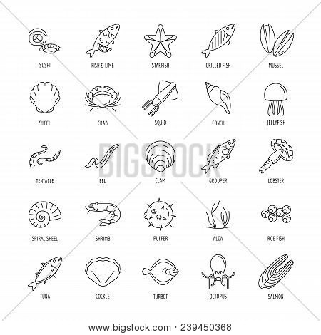 Seafood Icon. Outline Seafood Vector Icon With Fish And Octopus For Web Design Isolated On White Bac