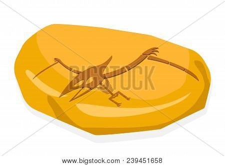 Pterosaurs Bone In Amber Fossil, On White Vector Art