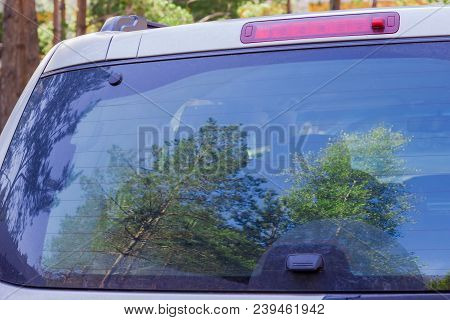 Fragment Of The Back Of The Modern Car With Brake Lights And Blurred Reflection Of The Coniferous An