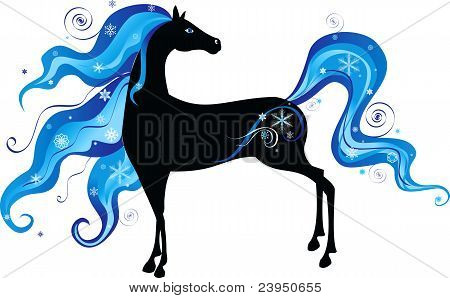 Horse-Winter