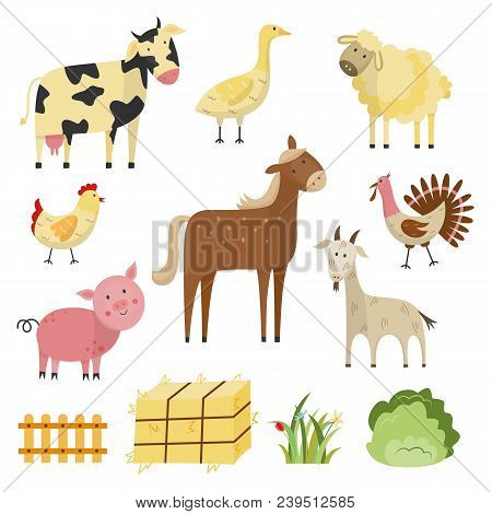Flat Farm Animals And Birds Live Stock And Rural Symbols Set. Spotted White Black Cow, Brown Horse,