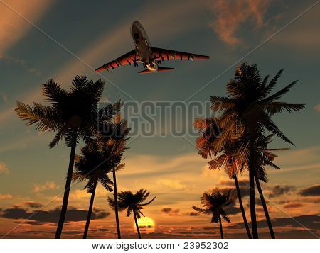 Plane Over Palm Trees