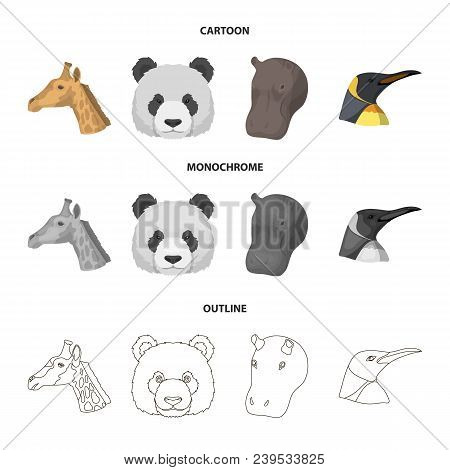 Panda, Giraffe, Hippopotamus, Penguin, Realistic Animals Set Collection Icons In Cartoon, Outline, M