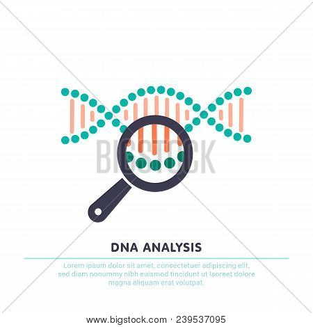 Dna Analysis Icon, Genetics Testing. Dna Chain In Magnifying Glass Sign. Genetic Engineering, Clonin