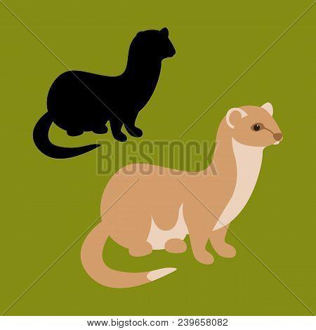 Weasel  Vector Illustration Flat Style Black Silhouette Set