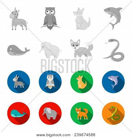Whale, Elephant, Snake, Fox.animal Set Collection Icons In Monochrome, Flat Style Vector Symbol Stoc