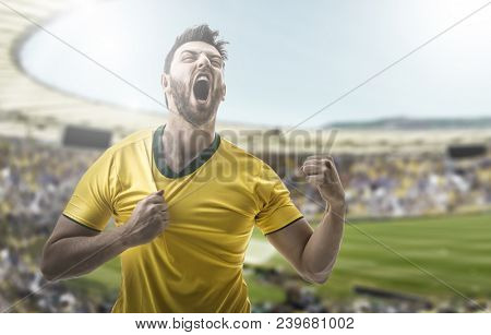 Young man fan celebrating in the stadium