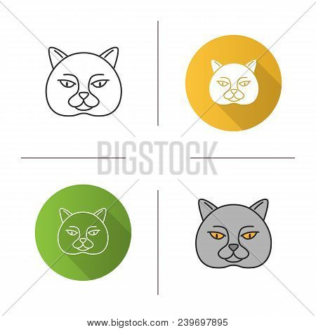 British Shorthair Cat Icon. Flat Design, Linear And Color Styles. British Blue. Isolated Vector Illu