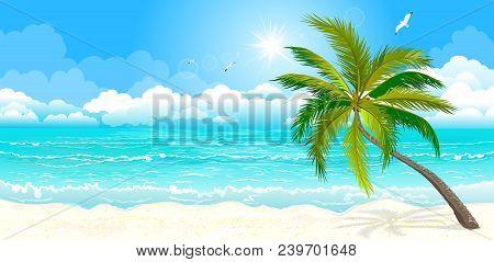 Landscape Of The Tropical Shore. The Landscape Of The Sea Shore With Palm Tree. Sea Shore With Palm